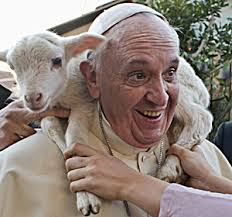 pope francis and the lamb